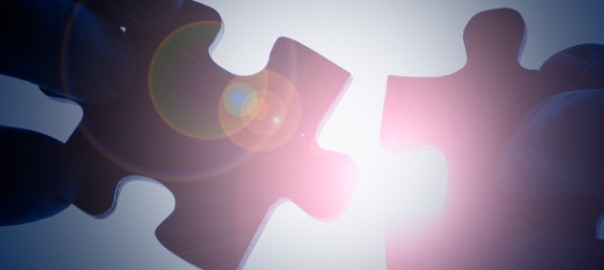 JV Puzzle piece